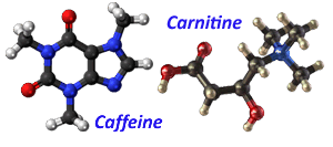 Caffeine and Carnitine